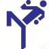 Кубок мира по кикбоксингу. Первое знакомство с Италией